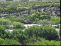Land for Sale for sale in Struis Bay