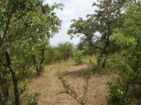 Land for Sale for sale in Hoedspruit