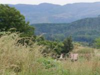 Land for Sale for sale in Sabie