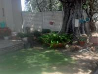 Backyard of property in Koppies