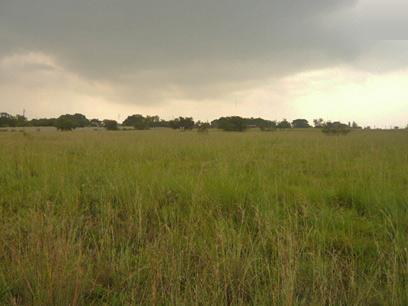 Land for Sale For Sale in Krugersdorp - Private Sale - MR15334
