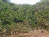 Land for Sale for sale in Bettys Bay