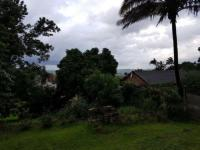 Backyard of property in Stanger