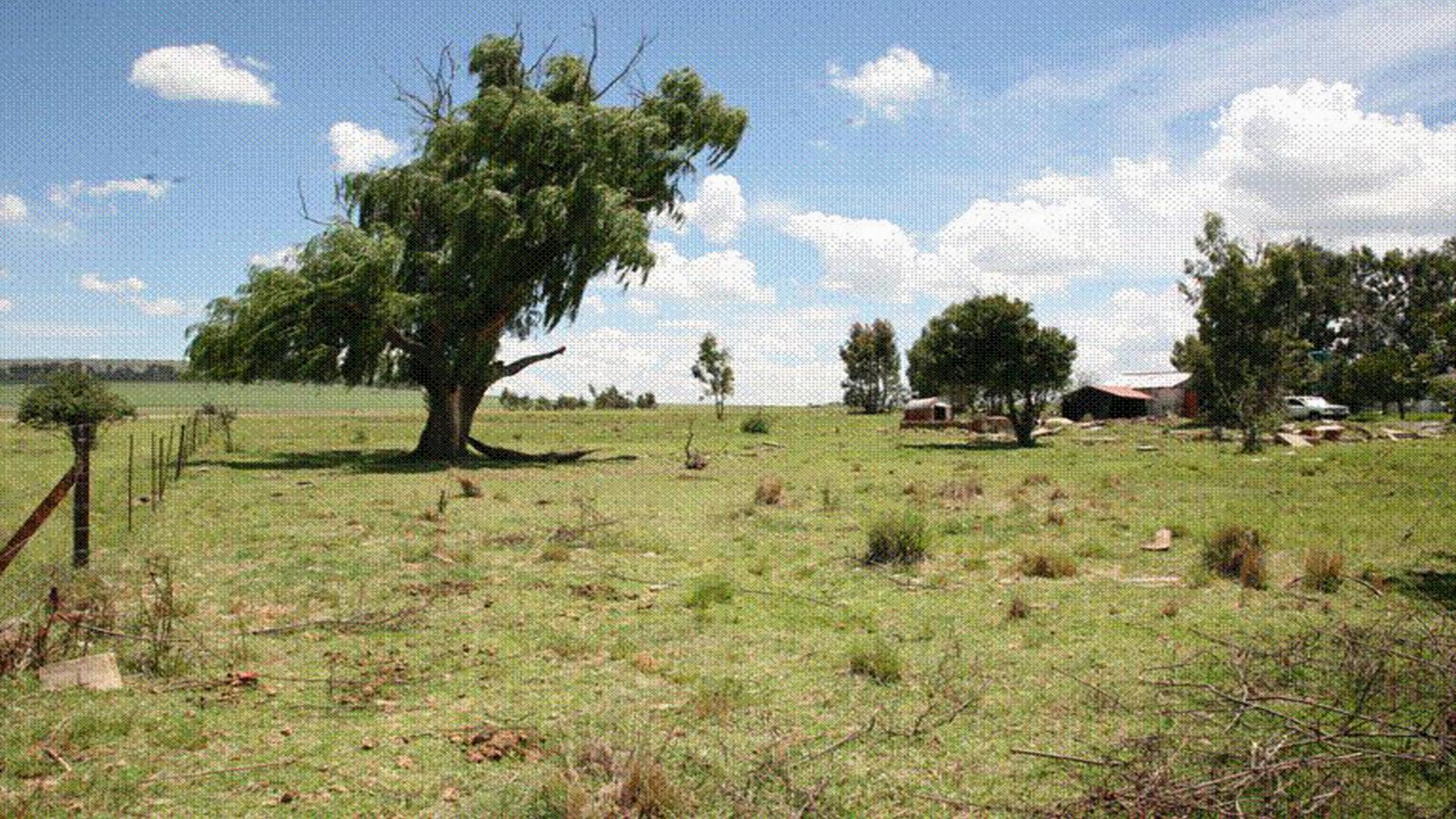 Land for sale for sale in memel home sell mr159707 for States with free land