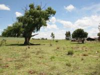 Land for Sale for sale in Memel