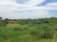 Smallholding for Sale for sale in Koppies