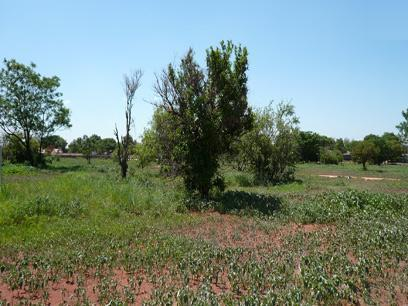 Land for Sale For Sale in The Orchards - Private Sale - MR16170