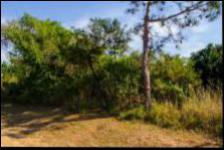 Land for Sale for sale in Palm Beach