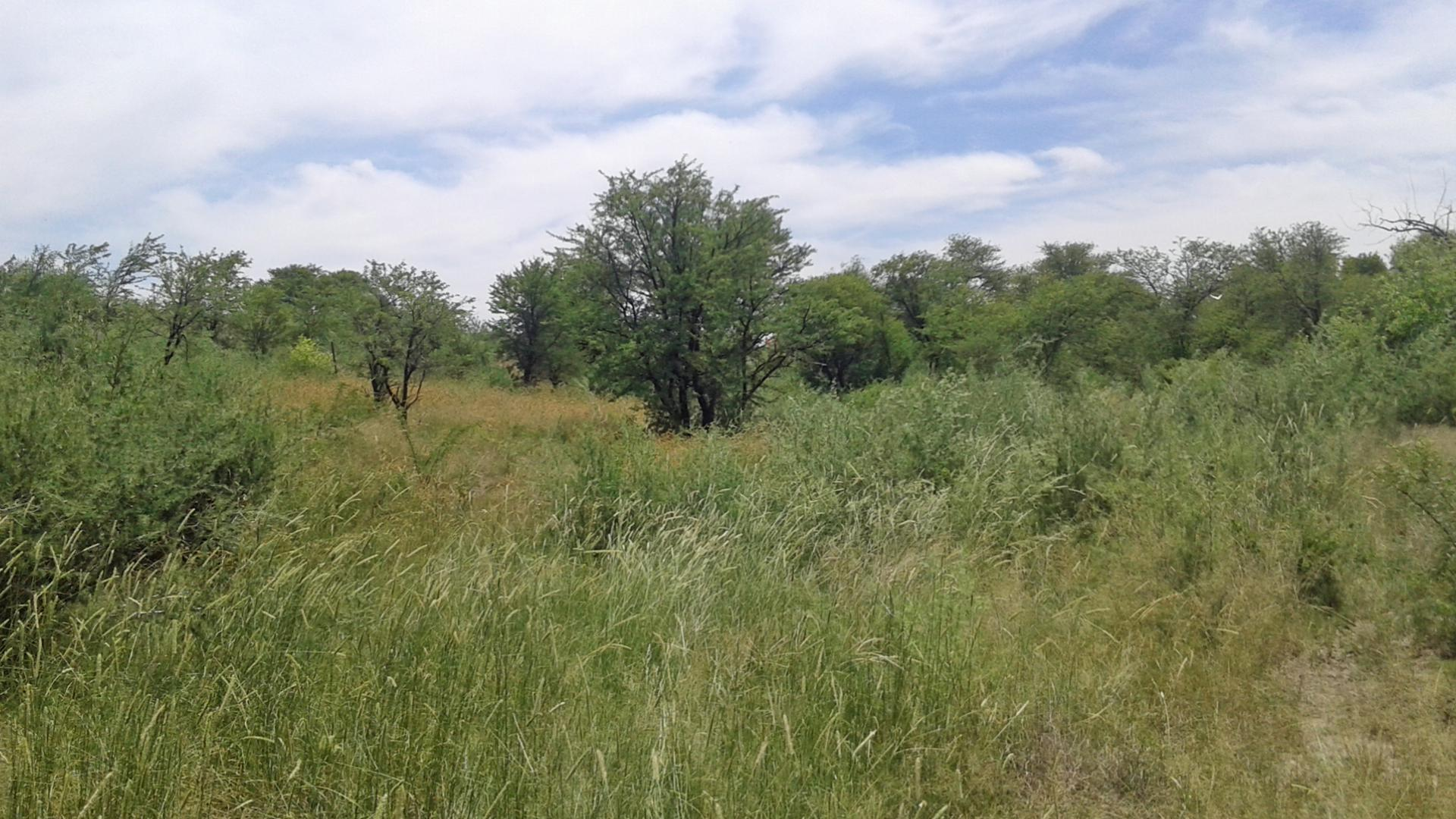 Land for sale for sale in koppies private sale for States with free land