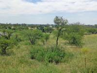 Land for Sale for sale in Koppies