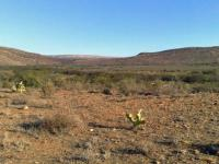 Land for Sale for sale in Willowmore