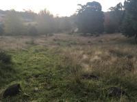 Land for sale in Nottingham Road