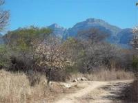 Land for Sale for sale in Thabazimbi