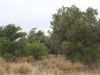 Land for Sale for sale in Leeuwfontein Estates