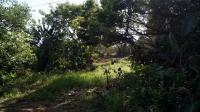 Land for Sale for sale in Munster