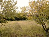 Commercial for Sale for sale in Trompsburg