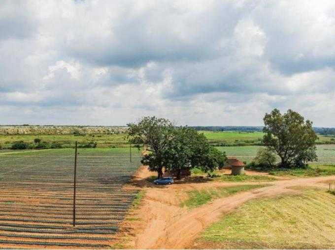 Farm for Sale For Sale in Pyramid - MR204377