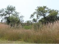 Land for Sale for sale in Sable Hills