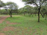 Land for Sale for sale in Buffelsdrift