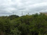 Land for Sale for sale in Colchester