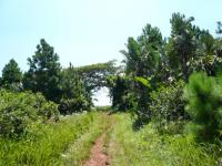 Land for Sale for sale in Trafalgar