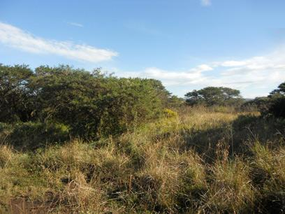 Standard Bank Repossessed Land for Sale For Sale in East London - MR27528