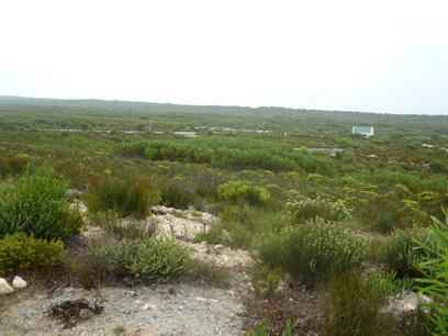 Standard Bank Repossessed Land on online auction in Struis Bay - MR28524
