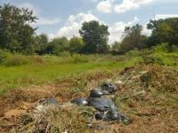 Land for Sale for sale in Buccleuch