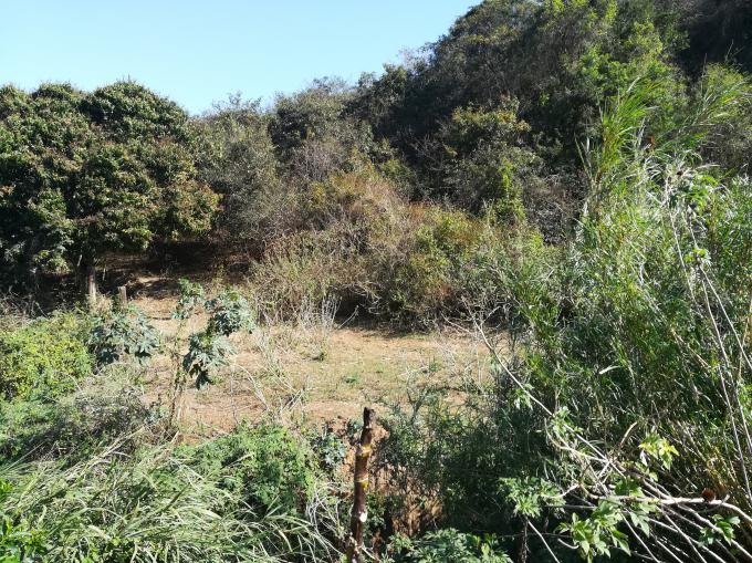 Smallholding for Sale For Sale in Umkomaas - MR332373
