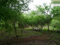 of property in Marloth Park
