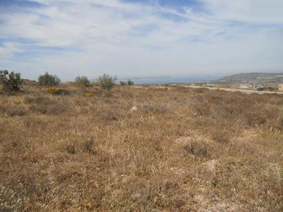 Standard Bank Repossessed Land for Sale on online auction in Saldanha - MR39482