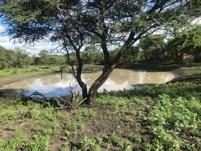 Farm for Sale For Sale in Thabazimbi - MR398554