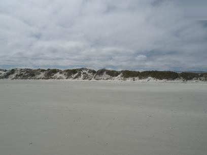 Land for Sale For Sale in Yzerfontein - Home Sell - MR42335