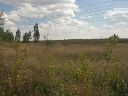 Land for Sale For Sale in Springs - Private Sale - MR46330