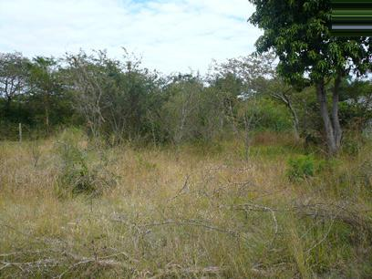 Standard Bank Repossessed Land for Sale For Sale in Hazyview - MR86456